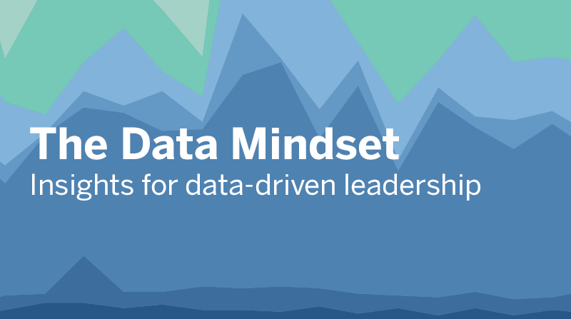 image of The Data Mindset