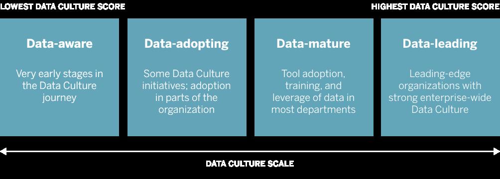 Data Culture Scale