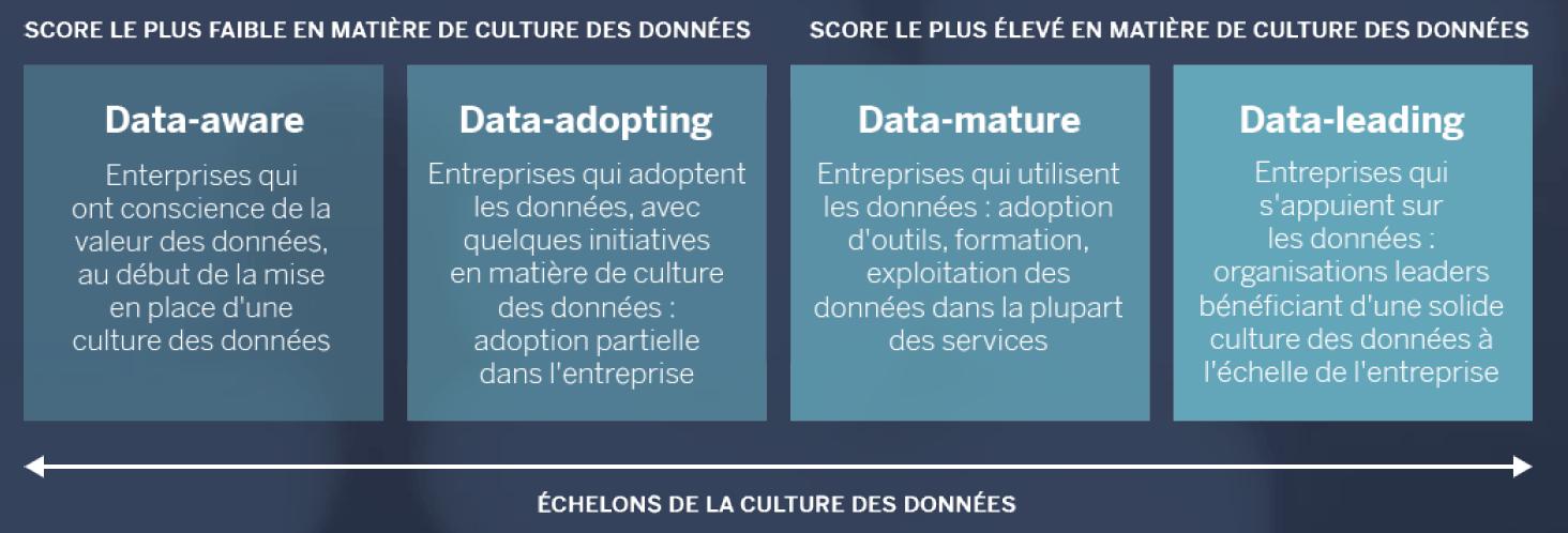 Échelons de la culture des données