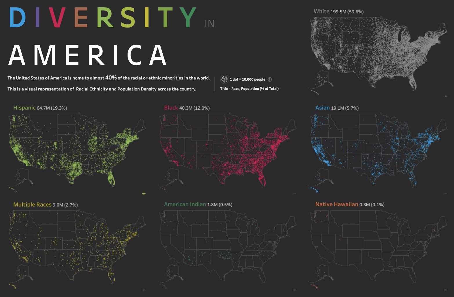 Diversity in America Visualization