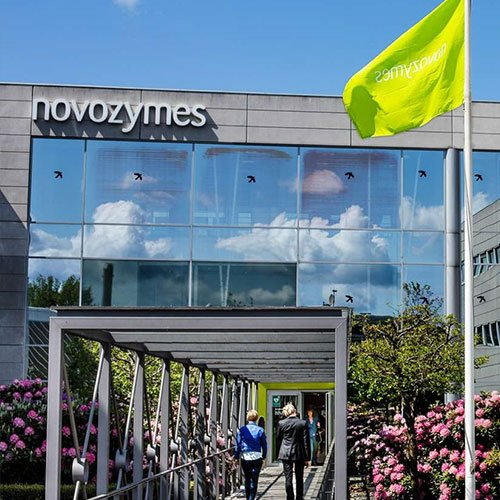 Biotechnology company, Novozymes empowers sales teams with mobile dashboards & cuts reporting time by 90%的图像